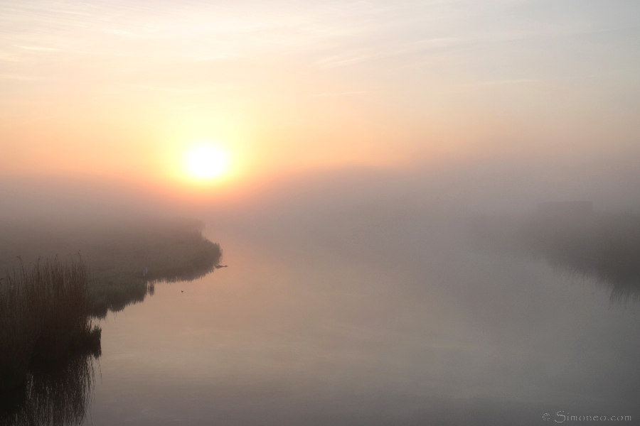 Fog @Dorre Ilp