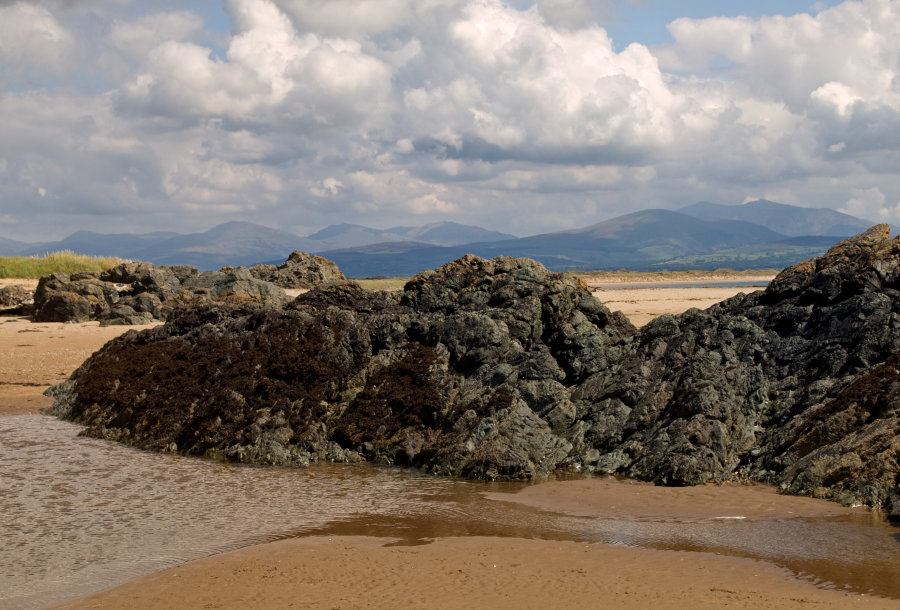Llandwyn Island, Snowdonia mountains in the distance