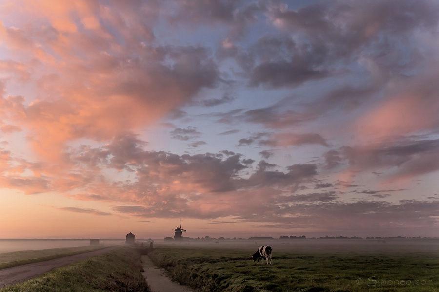 Molen De Breek bij een mistige zonsopgang