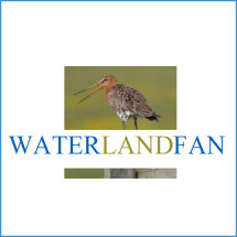 Fb pagina Waterlandfan mmv Simone Opdam