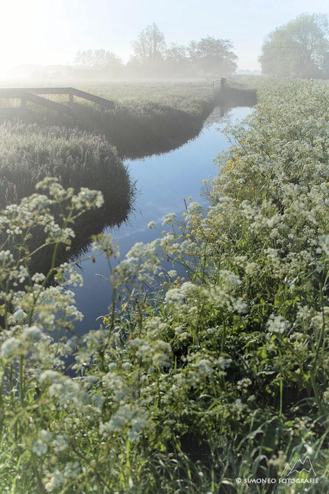 Slootje in Waterland