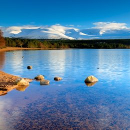 View of cairngorms from Loch Morlich Scotland