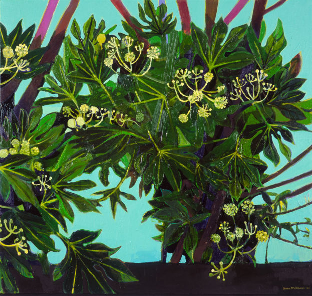 Fatsia Japonica, oil on canvas, 97 x 102cm