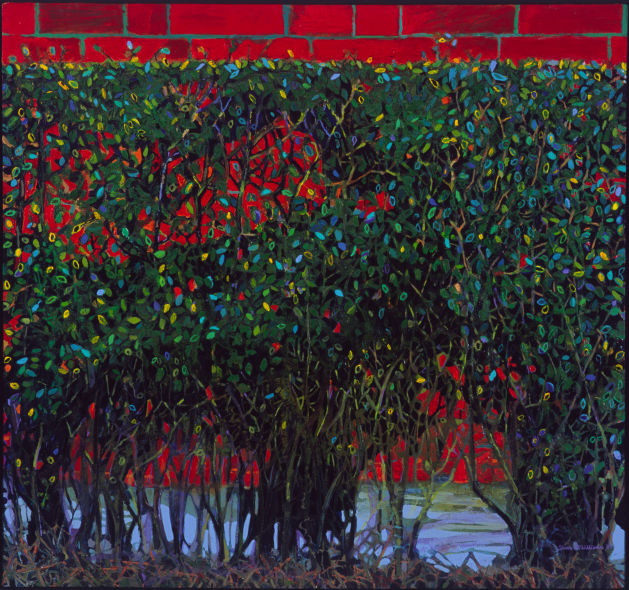 Hedge, oil on canvas 38 x 40 ins