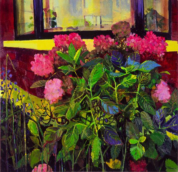 Hydrangeas oil on canvas, 97 x 102cm
