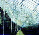 Palmhouse, Belfast, Oil on Canvas, Simon McWilliams