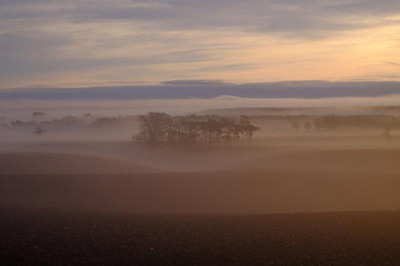 Tayport morning mist
