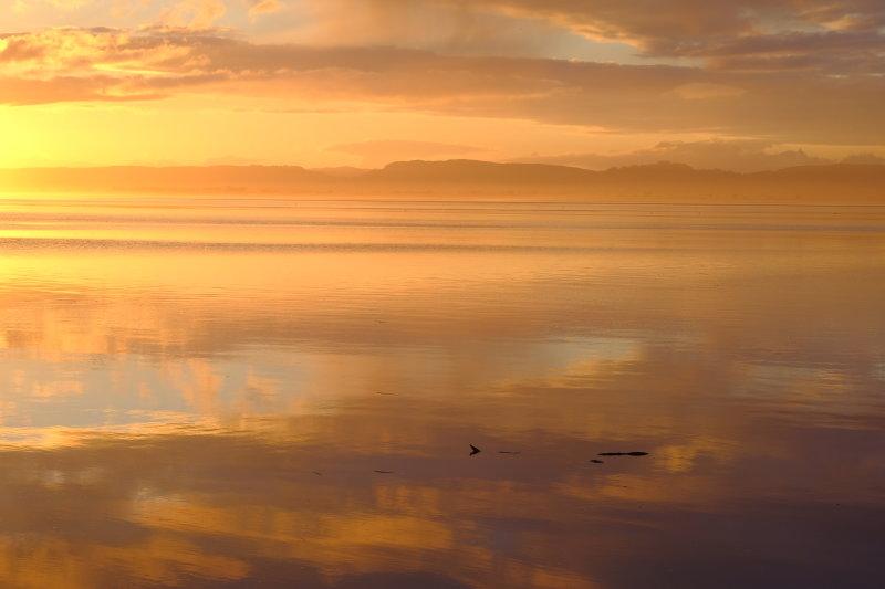 Balmerino golden sunset