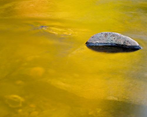 Reflected gold, Dunkeld