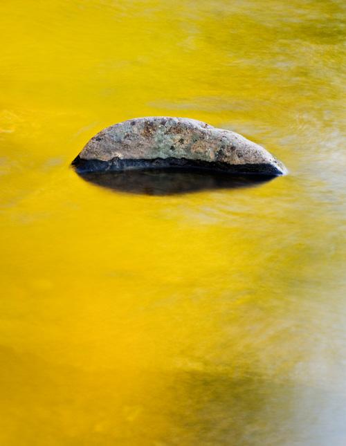 Reflected gold II, Dunkeld