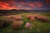 Great Ridge Sunset