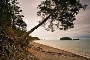 Bay of Fundy Coastal Erosion
