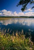 Tilt Pond