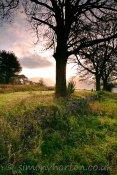 Corpach Loch Gardens