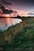Gunners Lake Sunset