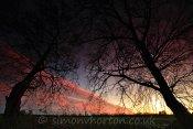Wakering Sunset