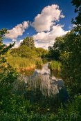 Brickfields Fishing Lake