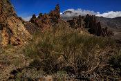 North of Los Roques de Garcia Trail
