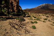 Pico Veijo (and Mt. Teide) from the Western Caldera