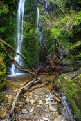 Big Girl Waterfall in Dhoon Glen