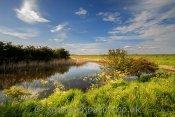 By Barlinghall Creek