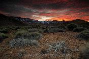 Teide South West Caldera Rim Sunset