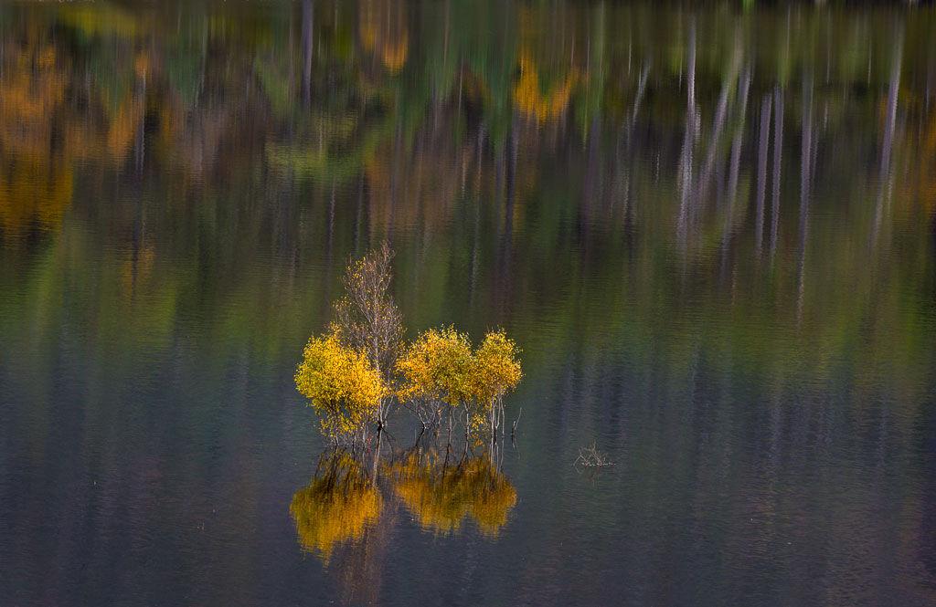Autumn Reflections Glen Affric