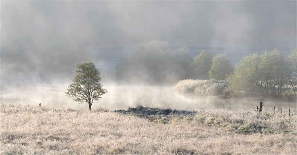 Winter Mists