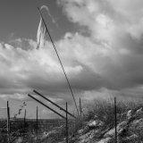 Cabo Surrender IMG 3554