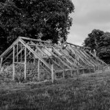 Old Greenhouse DSF9357