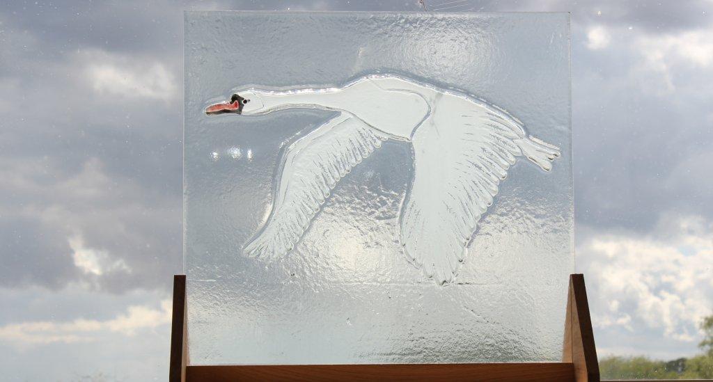 Swan - Faith