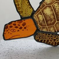 Turtle glass hanging