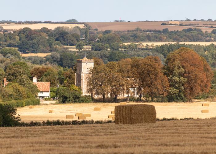 Harvest Festival Time