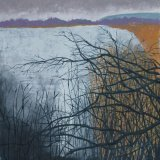 Branches, Lake of Menteith in winter
