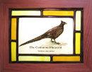 The Common Pheasant