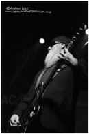 THE ZZ TOPS - LEAMINGTON ASSEMBLY 2011