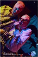 THE MOSQUITOS - ZEPHYR LOUNGE, LEAMINGTON SPA 2013