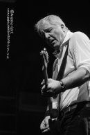 DR FEELGOOD - LEAMINGTON ASSEMBLY 2014