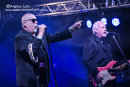 THE FIRM - NAPTON FESTIVAL 2017