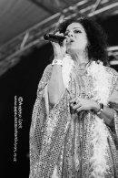 ABBA CHIQUE - NAPTON FESTIVAL 2019