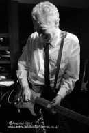 THE MOSQUITOS - TROYAL HORSE, LEAMINGTON SPA 2014