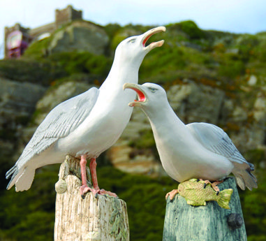 Ceramic seagulls by Jackie Summerfield