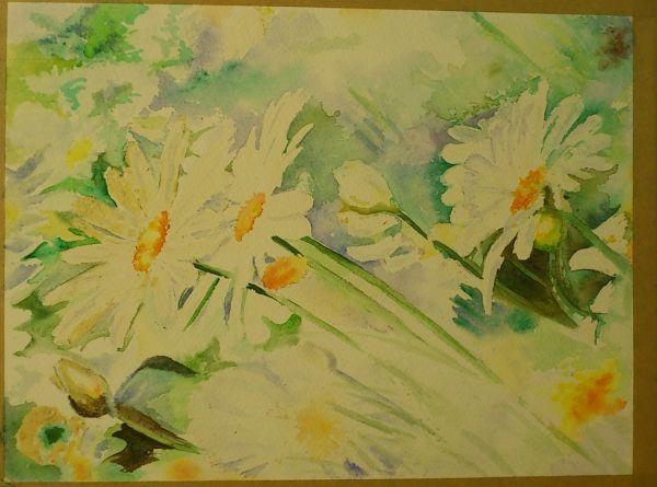 Daisies painted by Elizabeth