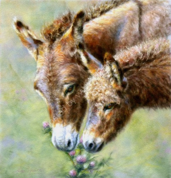 A Prickly Treat, Donkey & Foal