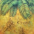 Living Fossil Cycad leaves and Fossils
