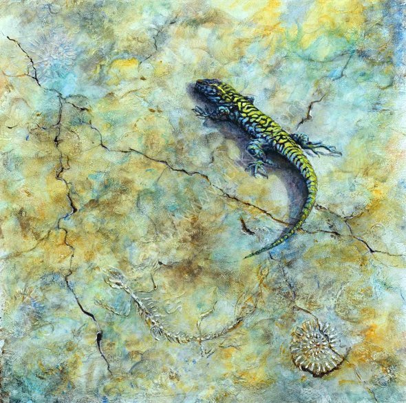 Living Fossil,Green Backed wall Lizard.