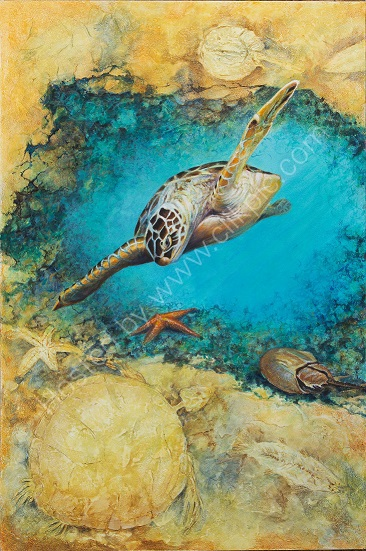 Living Fossils Green Turtle & Star Fish