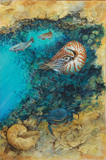 Living Fossils Nautilus & Crab