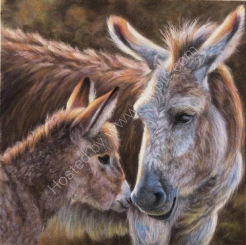 Nuzzles, Donkey & Foal