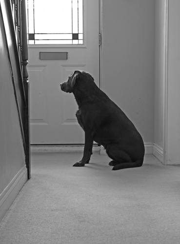 Waiting for Gary